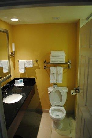 Wyndham Gettysburg: Bathroom area