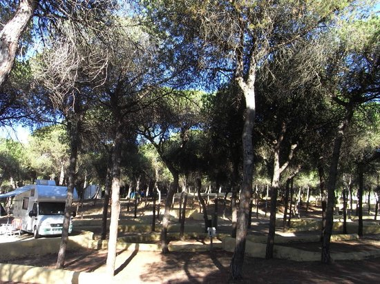 Camping playa las dunas el puerto de santa mar a espagne for Camping jardin de las dunas tarifa
