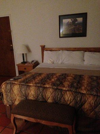 واي أو رانش ريزورت هوتل: The hotel room