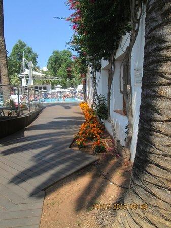 Hotel Cala Galdana & Villas d'Aljandar: Attractive grounds