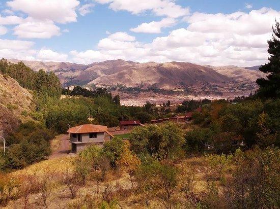 Etnikas Ayahuasca Retreats: What a view