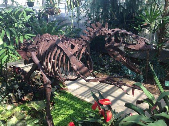 Etonnant UNC Charlotte Botanical Gardens: Tyrannosaurus Rex