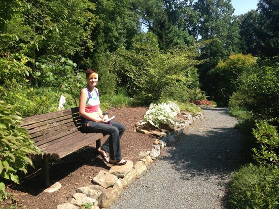 UNC Charlotte Botanical Gardens: A Nice Bench On The Trail