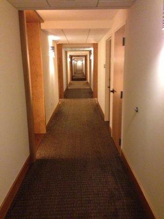 Hotel Vermont : hallway