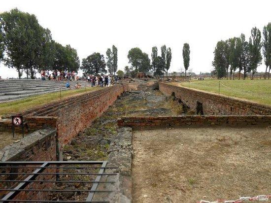 SeeKrakow Day Tours: ruïne gaskamer birkenau