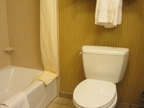 Hampton Inn Matamoras: Bath photo 1