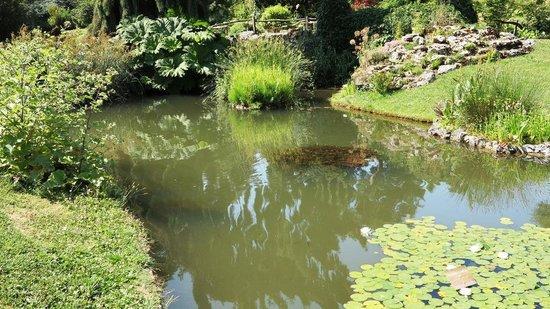 conservatoire et jardin botaniques de la ville de geneve geneva jardin botanique - Jardin Botanique Geneve