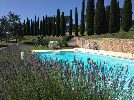Sassi Bianchi: wonderful swimmingpool