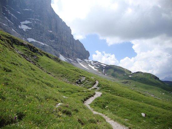 Grindelwald, Suiza: View towards Eigergletcher Station