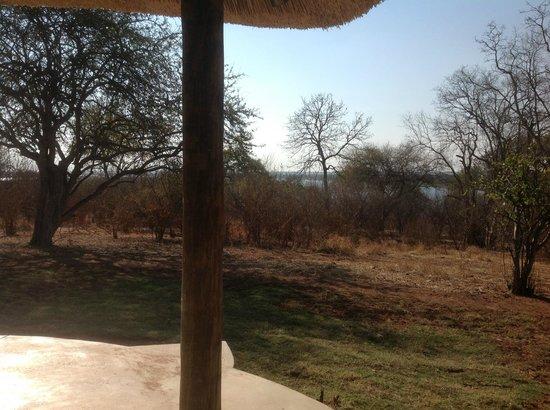 Imbabala Zambezi Safari Lodge: View from room 9