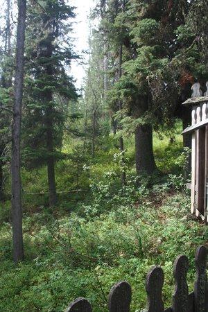 티턴 트리 하우스 이미지