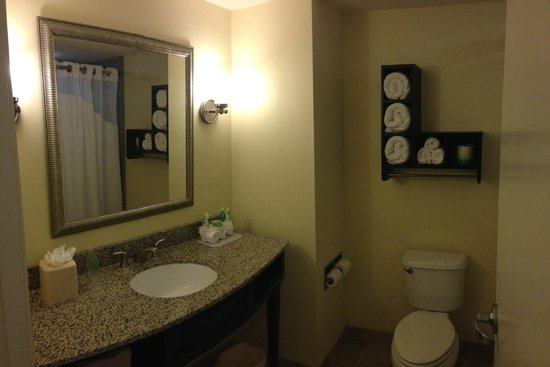 Holiday Inn Express Hotel & Suites Saint Augustine North: Clean & Spacious Bathroom