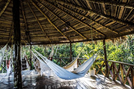 Amazon River, AM: La tranquilidad del mirador y zona de descanso con sus hamacas