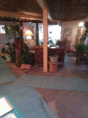 La Paloma Hot Springs & Spa: Common area in bath house- calm and relaxing.  Kitty greeter was nice, too!