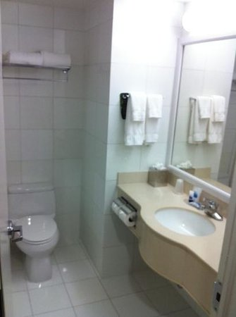 BEST WESTERN PLUS Arena Hotel : bathroom