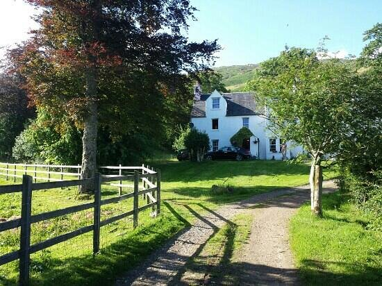 The Farm House B&B : drive up to the house