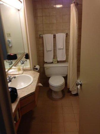 Hotels Gouverneur Montreal: Bathroom