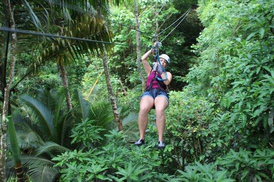 Treetop Adventure Park: Zip Lining
