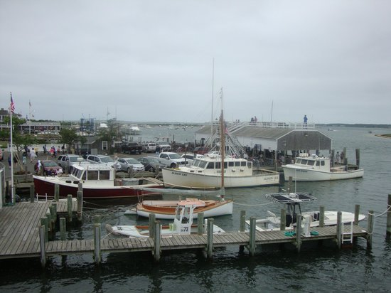 Seafood Shanty : Harbour