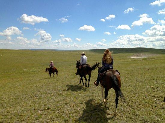 JJJ Wilderness Ranch: prairie ride