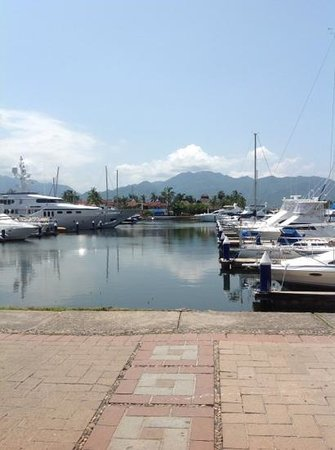Bachas Restaurant: A Beautiful View of the Marina!