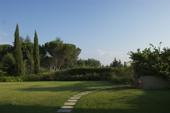 Borgo Villa Risi: View from our front patio