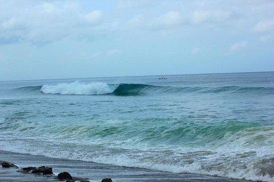 Buena Onda Beach Resort : out front