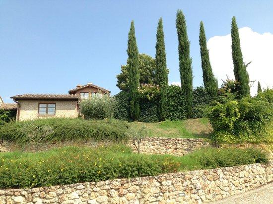 Borgo Villa Risi: Our Apartments