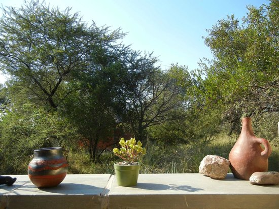 Mohlabetsi Safari Lodge : View from the outdoor shower