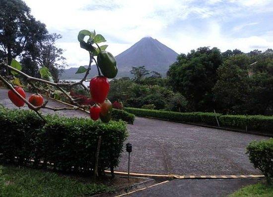Hotel Arenal Vista Lodge, em Arenal, Costa Rica