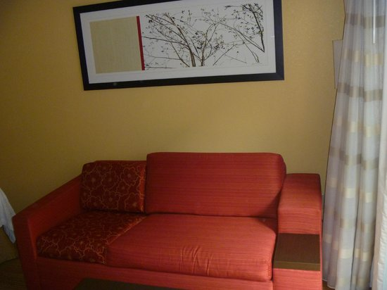 Courtyard Arlington Rosslyn : Pullout sofa