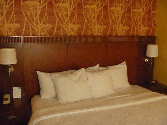 Courtyard Arlington Rosslyn : King Bed