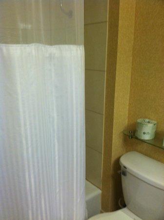 Radisson Hotel Harrisburg: Our second room.  Nice looking bathroom.  It's bigger, at least.  Only half the lights work, tho