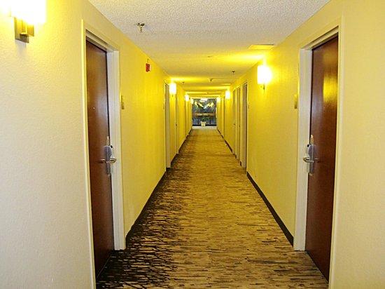 Red Roof Plus+ Miami Airport: Corridors