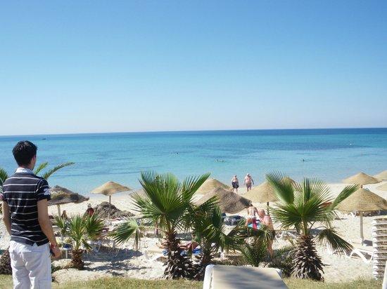 Palm Beach Club Hammamet : Vue du solarium
