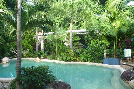 Boutique Bungalows: Beautiful rainforest garden