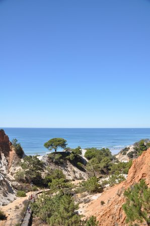 Plage de Falesia : The path to the beach