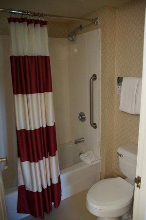 Residence Inn Austin Northwest/Arboretum: Bathroom