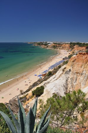 Plage de Falesia : View of the beach from the golf course