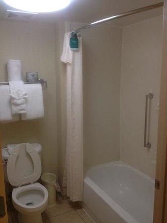 Homewood Suites St. Louis Chesterfield: bathroom