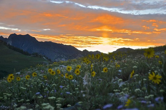 Little Cottonwood Canyon: Sunset over Mt. Superior