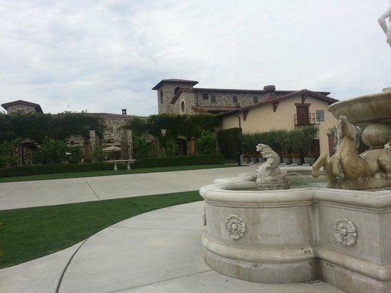 Jacuzzi Family Vineyards: Back patio at Jacuzzi Vineyards