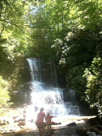Miller's Land of Waterfall Tours : Beautiful waterfall