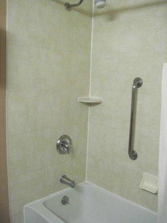 Hampton Inn by Hilton Guadalajara-Aeropuerto: Shower