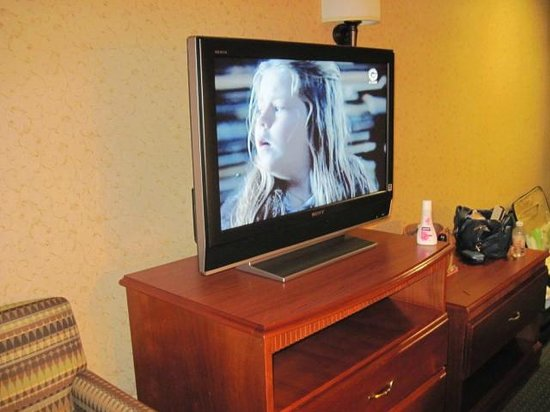 Hampton Inn by Hilton Guadalajara-Aeropuerto: TV with cable