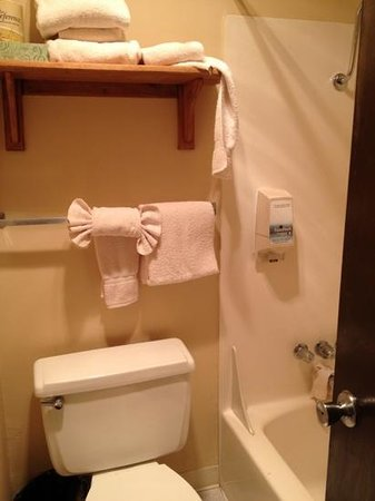 Ocean Crest Resort: bathroom - we messed the towels, but its a tiny space.