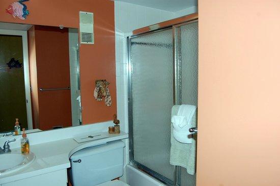 Madeira Vista Condominiums: 603 Spare Bathroom