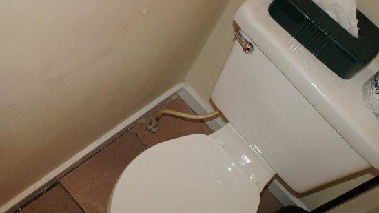 Heron House : Toilette