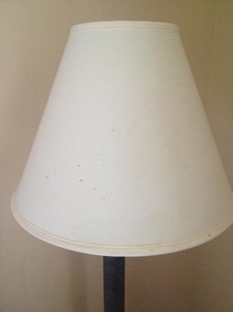 Baymont Inn & Suites Ft. Leonard / St. Robert: the lamp shade had stains all over it