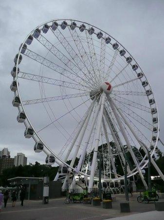 Wheel of Brisbane.
